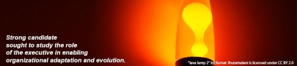 lava lamp 2